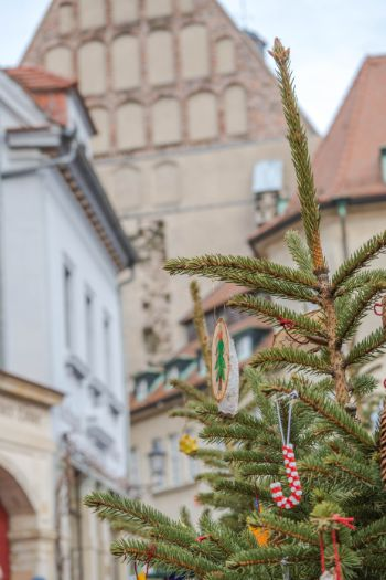 close up of Christmas tree at Meissen xmas market