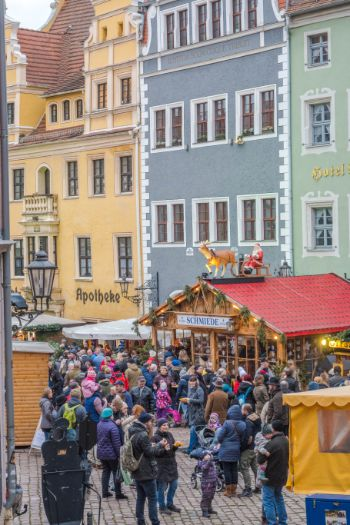 Christmas market stalls with horse carriage during Christmas market time