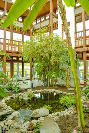 inside bamboo orchad of tea pavilion at Japanese Garden in Bad Langensalza, Germany