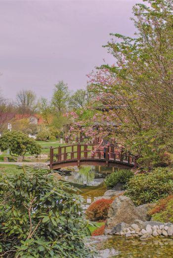 wooden bridge at Japanese Garden in Bad Langensalza, Germany