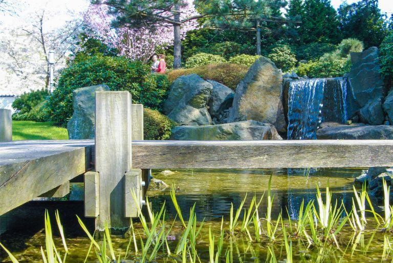wooden boardwalk across pond at Japanese Garden in Bad Langensalza, Germany