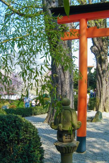 red torii gate at Japanese Garden in Bad Langensalza, Germany