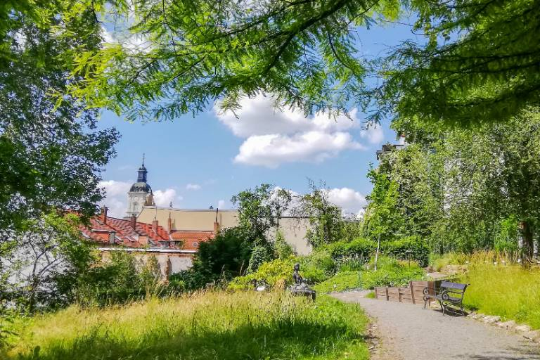 botanical garden of Gera on a sunny summer day