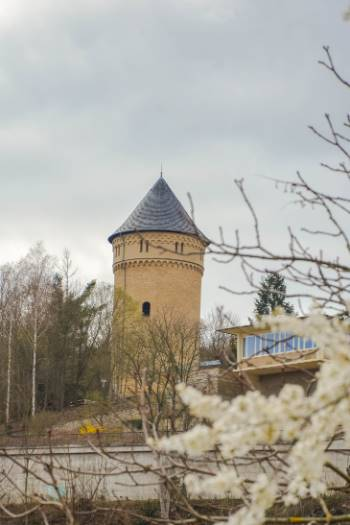 Osterstein Castle in Gera frame by spring bloom