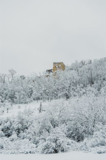 Lobdeburg Castle in Jena covered in snow seen from afar