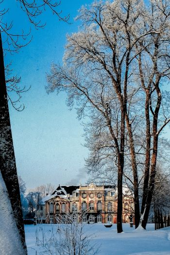 trees covered in snow provide a view to Molsdorf Palace in Erfurt, Germany