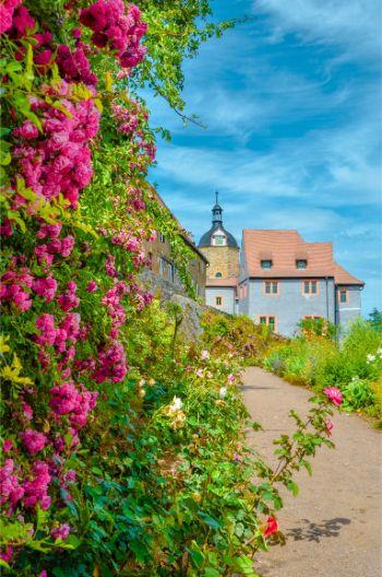 Old Castle at Dornburg Castle in Germany